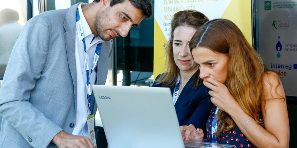 Innovation Pathway 2019 – Expo & Networking