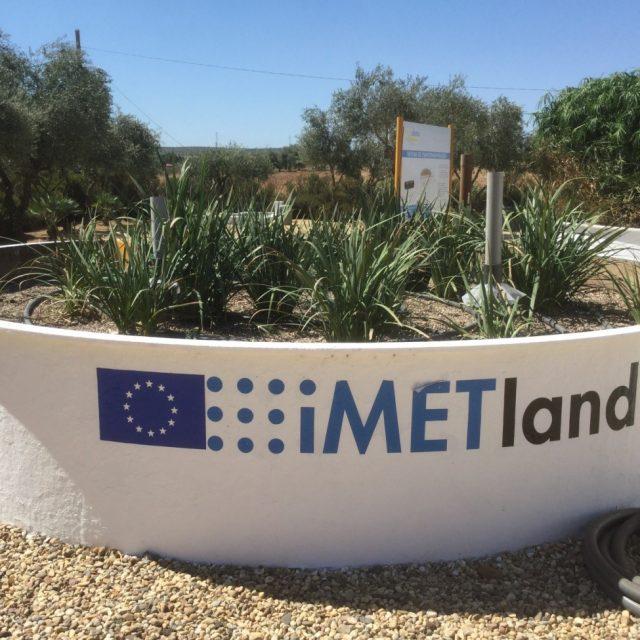 Bioelectrochemical treatment wetlands (METland®) in OWL2