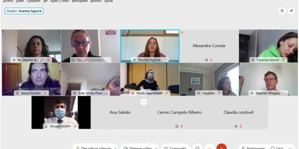 TWIST project partners had a videoconference meeting on 13 November, by Webex